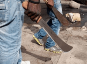 Lagos Police Command Arrests Notorious Cult Members In Lagos Island